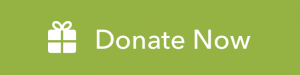 Donate-Now-Button@2x